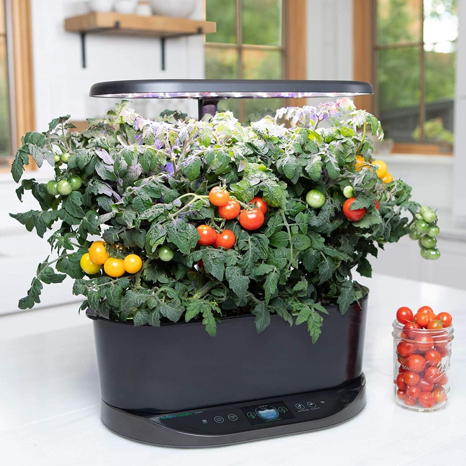 black device with herbs growing with led light overhead