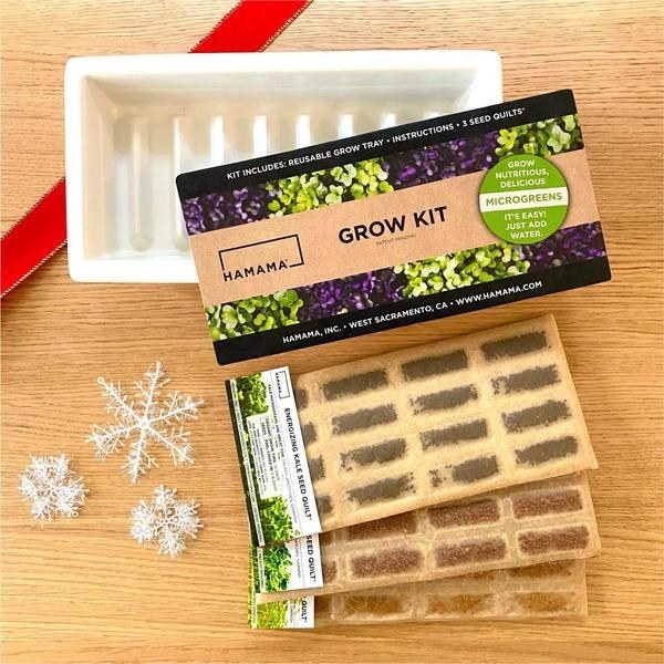 seed packs and container for sprouts