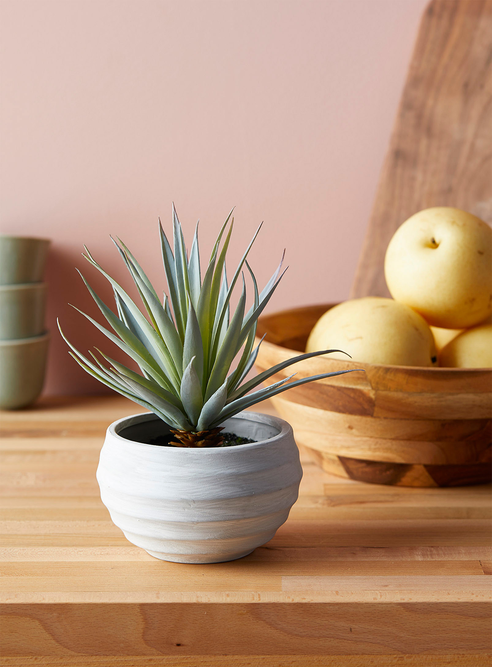 pineapple plant on table