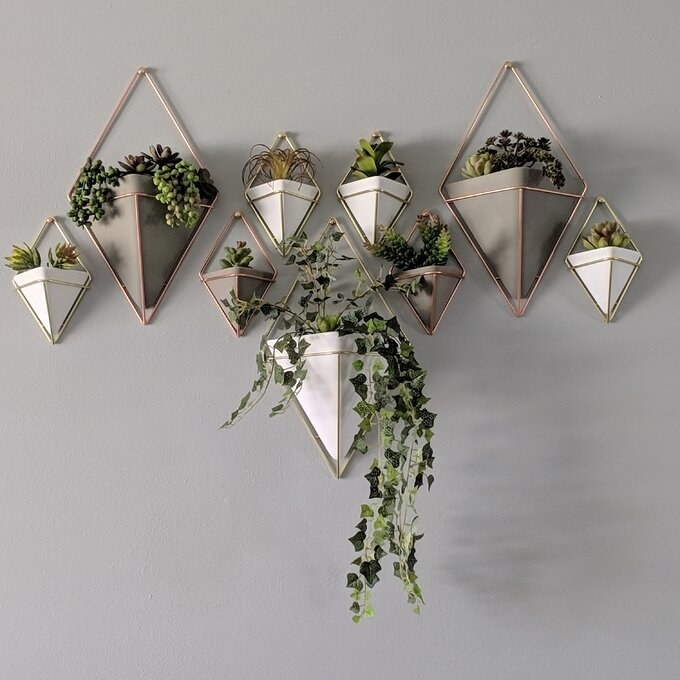 Reviewer's pictures of the diamond-shaped planters on the wall