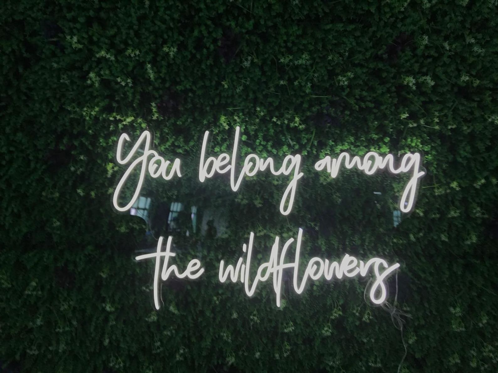 "the white neon sign that says ""you belong among the wildflowers"