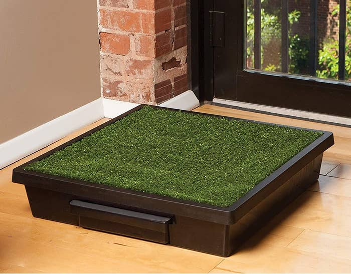 The grass pad on a hardwood floor