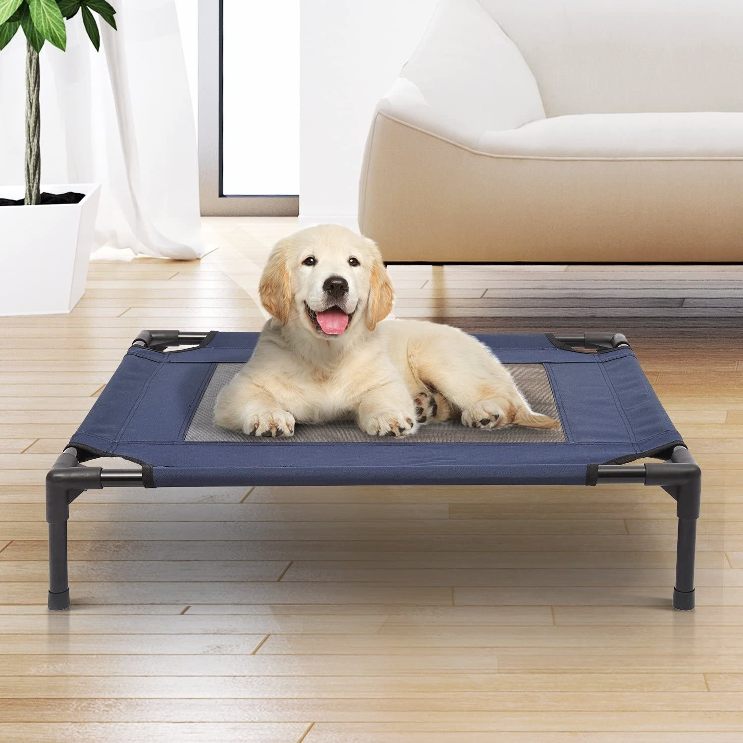 A dog on the dog cot in a living room