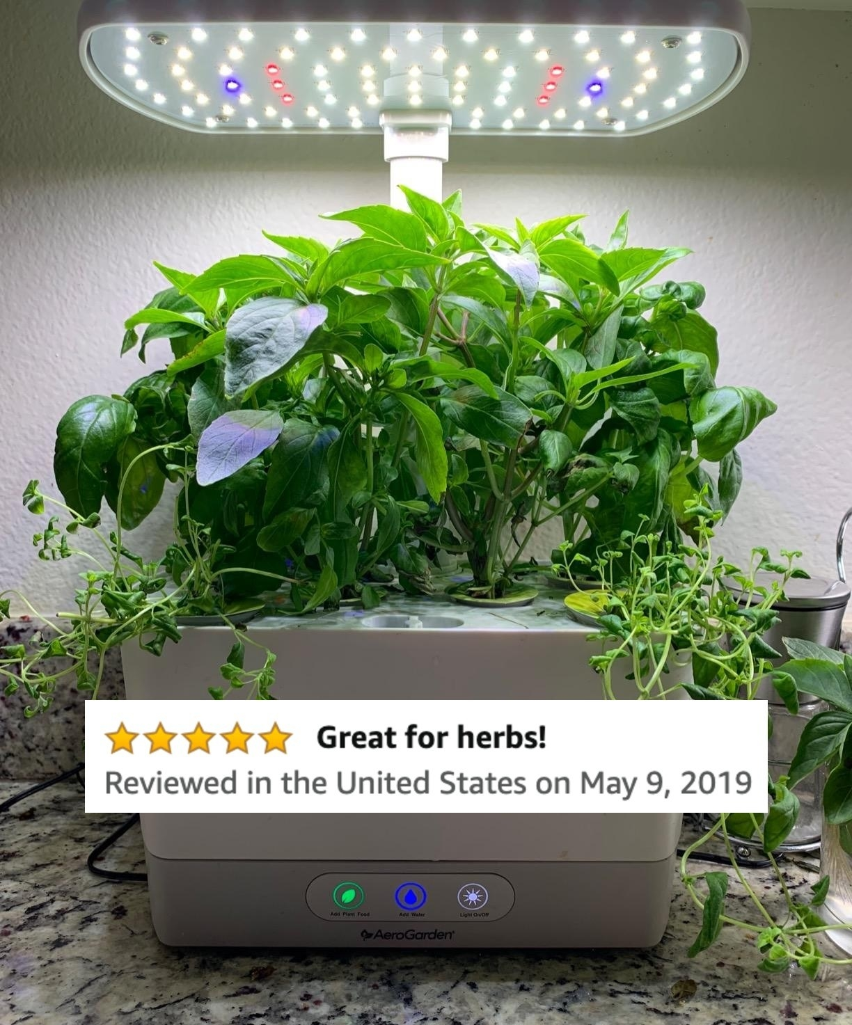 "A reviewer's photo of her garden and her five-star Amazon review which says ""Great for herbs!"""