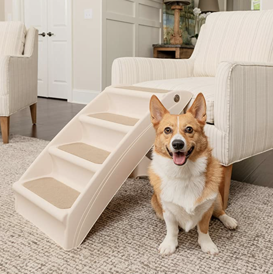 PetSafe foldable pet steps