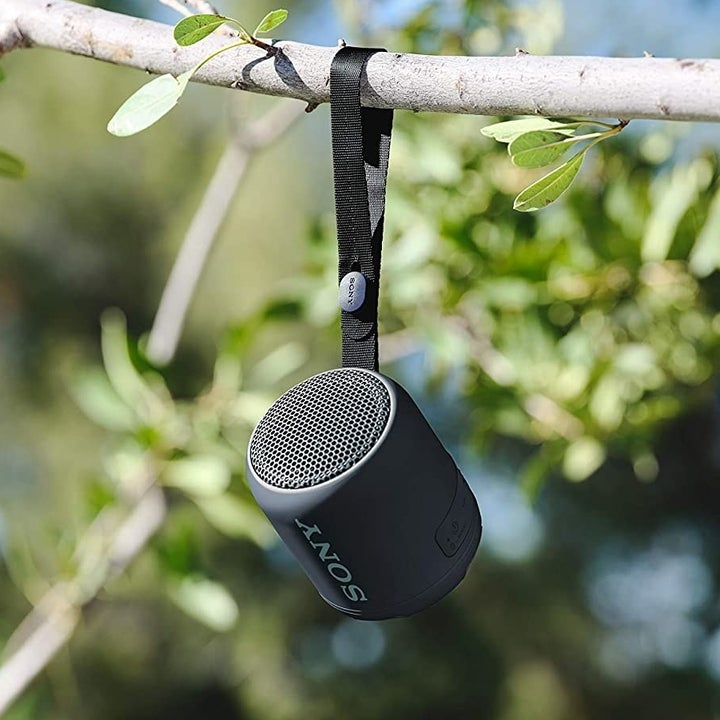 Sony Bluetooth speaker hanging from branch