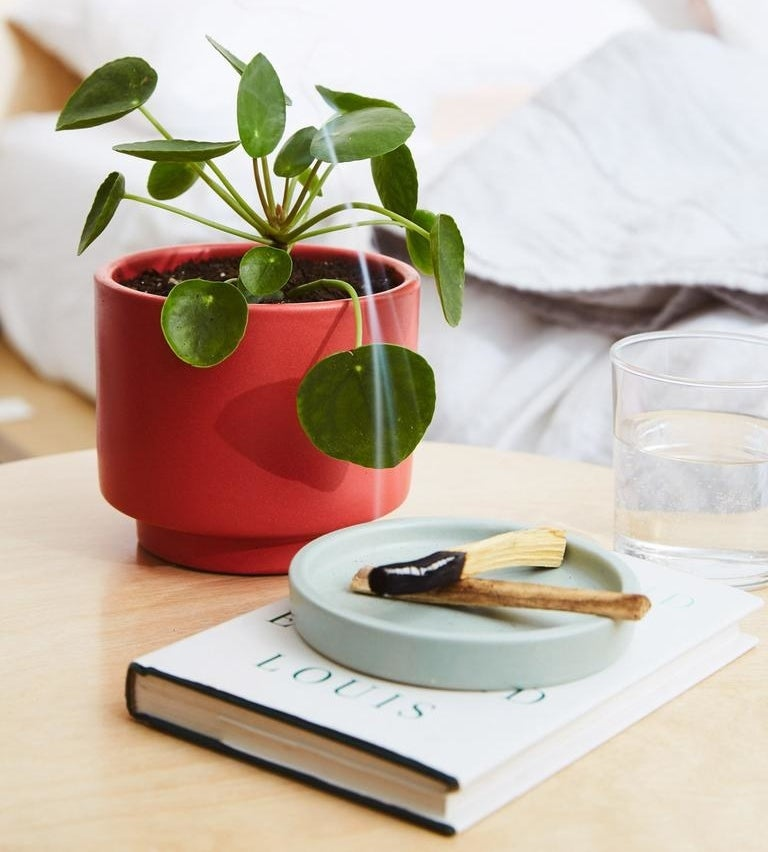 A small potted pilea peperomioide plant on a side table next to a book and a smoking palo santo stick