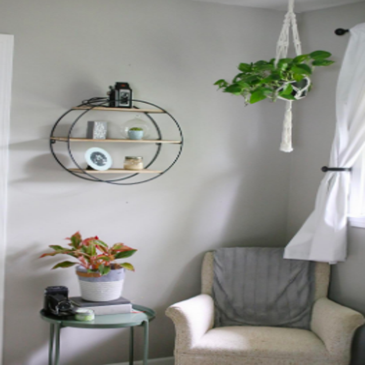 Corner of reviewer's room with hanging plants and wall-mounted shelf holding small objects