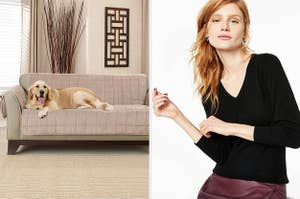 dog on a couch next to a model wearing a cashmere sweater
