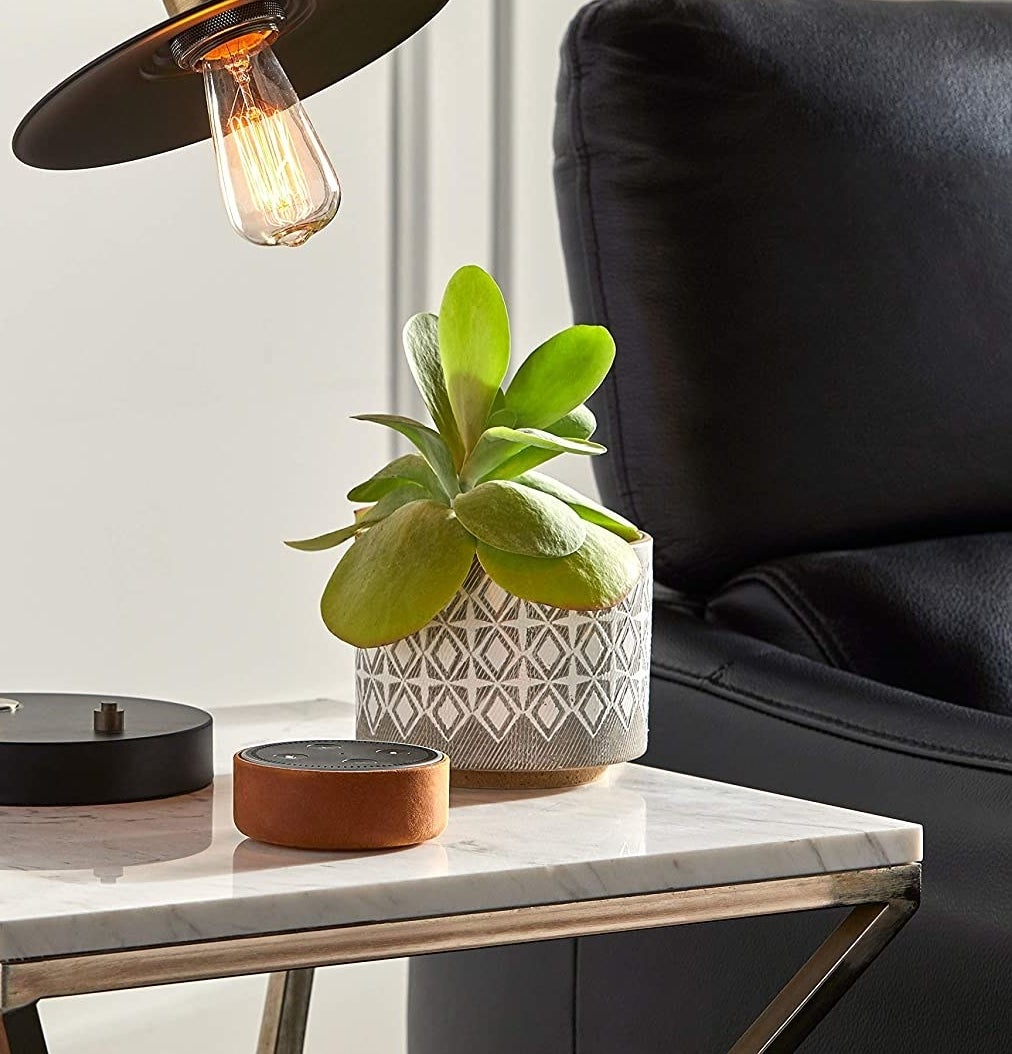 A ceramic planter on a side table with a plant in it