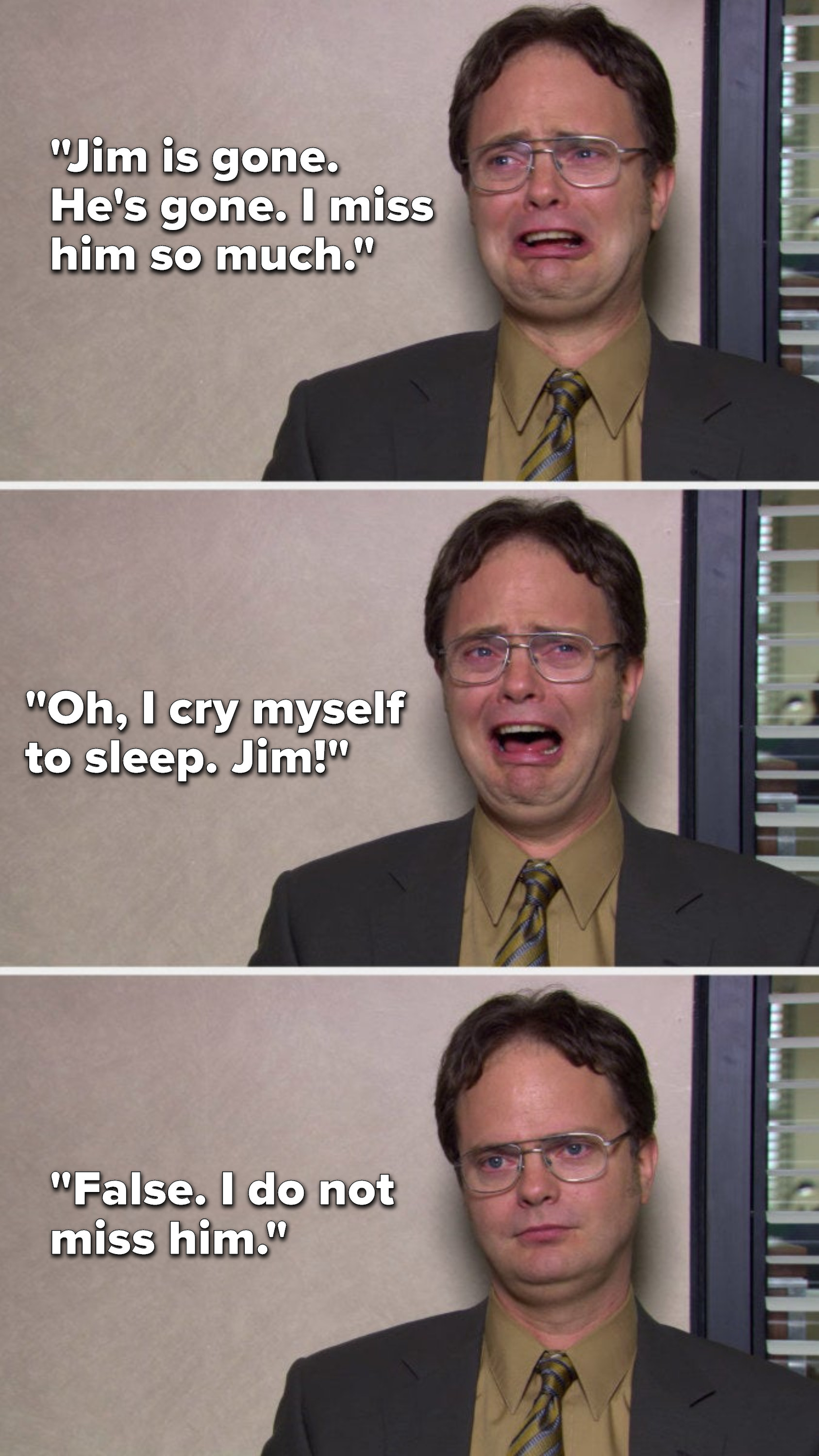 """Dwight cries, """"Jim is gone, he's gone, I miss him so much, oh, I cry myself to sleep, Jim"""" then he stops pretending to cry and says, """"False, I do not miss him"""""""