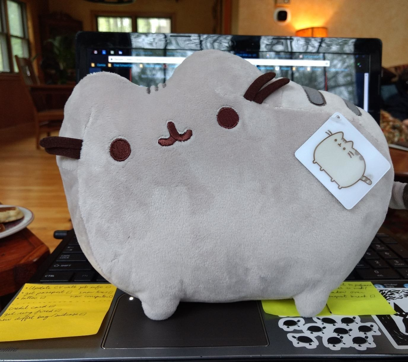 reviewer's grey pusheen plush