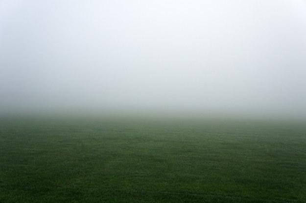 A foggy field