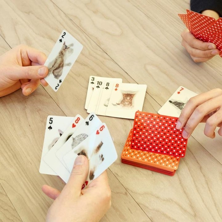 "Hands playing with the cards, which have different cats on each that ""animate"" when you move the cards back and forth"