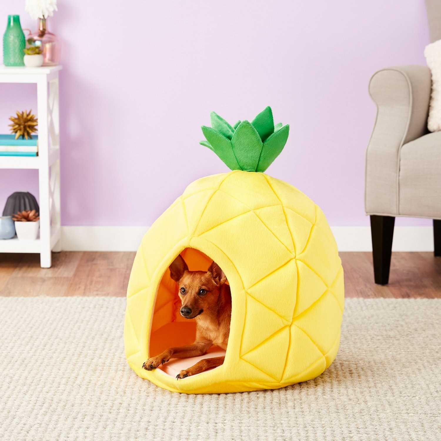 A dog lays inside the YML pineapple covered dog bed
