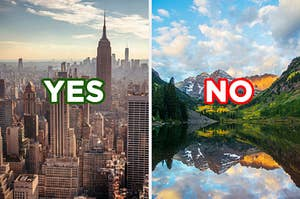 "On the left, the New York City skyline labeled ""yes,"" and on the right, a clear river near a forest and mountains labeled ""no"""