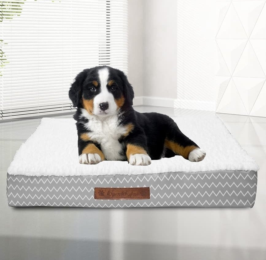 Duck River Textile memory foam dog bed