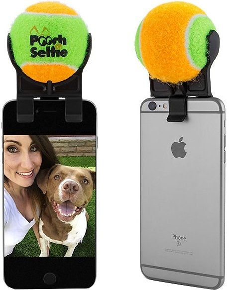 An iPhone with an attachment that hold a tennis ball on top of it