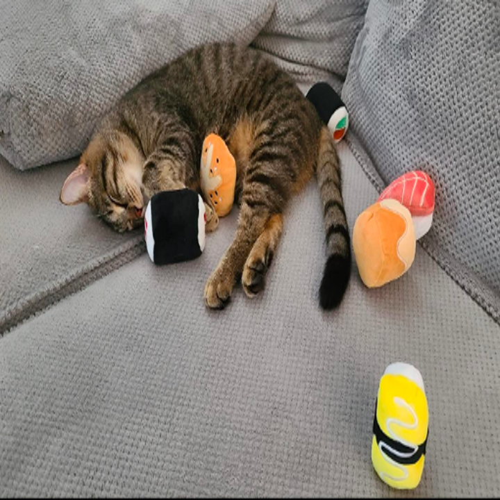 Cats snuggling toys that look like big sushi rolls