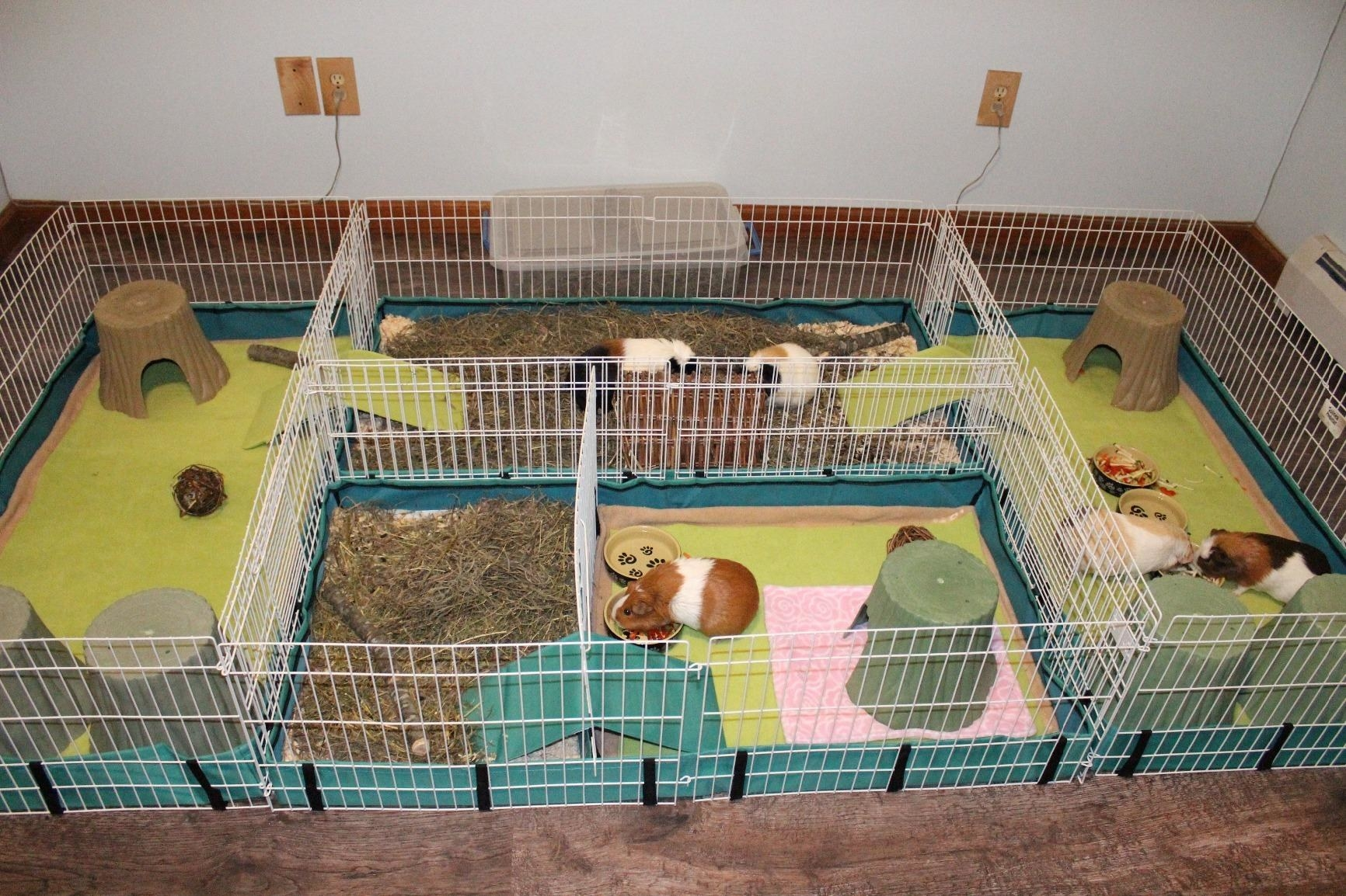 The habitat, which has wire mesh walls, a ramp, and dividers