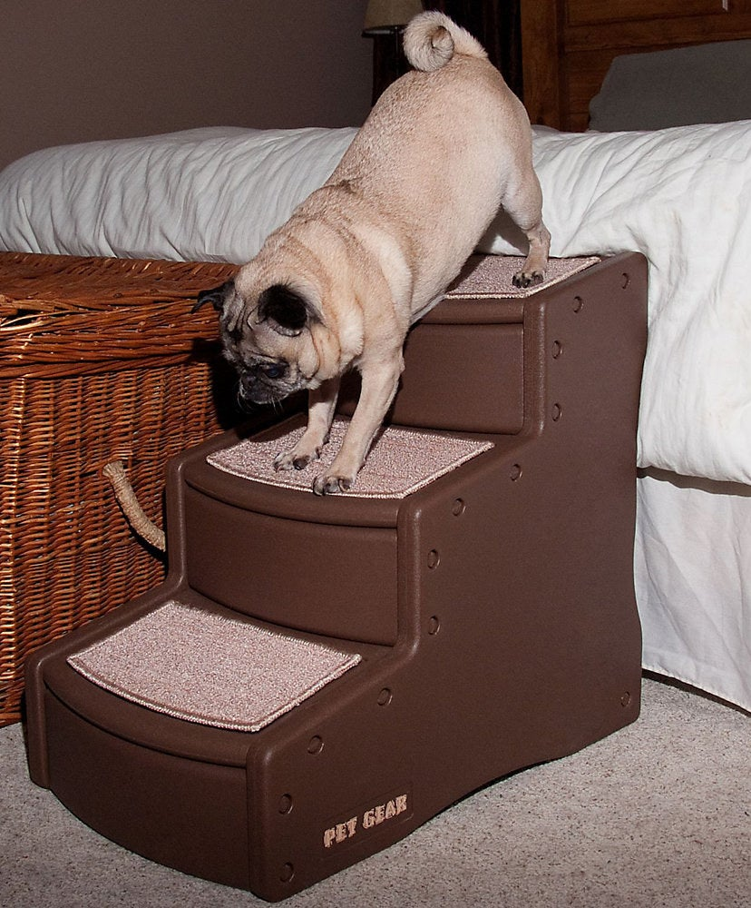 pug climbing down wide stairs leading from bed