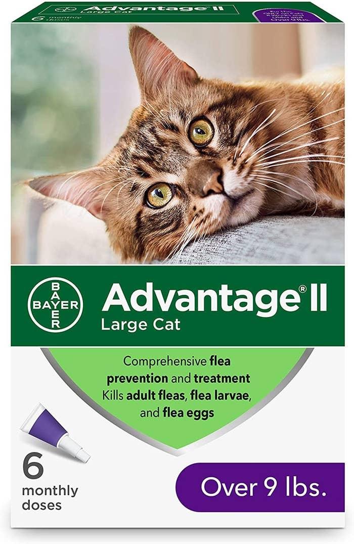 The flea prevention medication