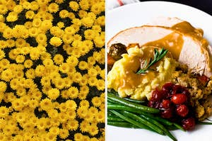 On the left, a field of flowers, and on the right, a dinner plate with turkey, mashed potatoes and gravy, stuffing, cranberries, and green beans