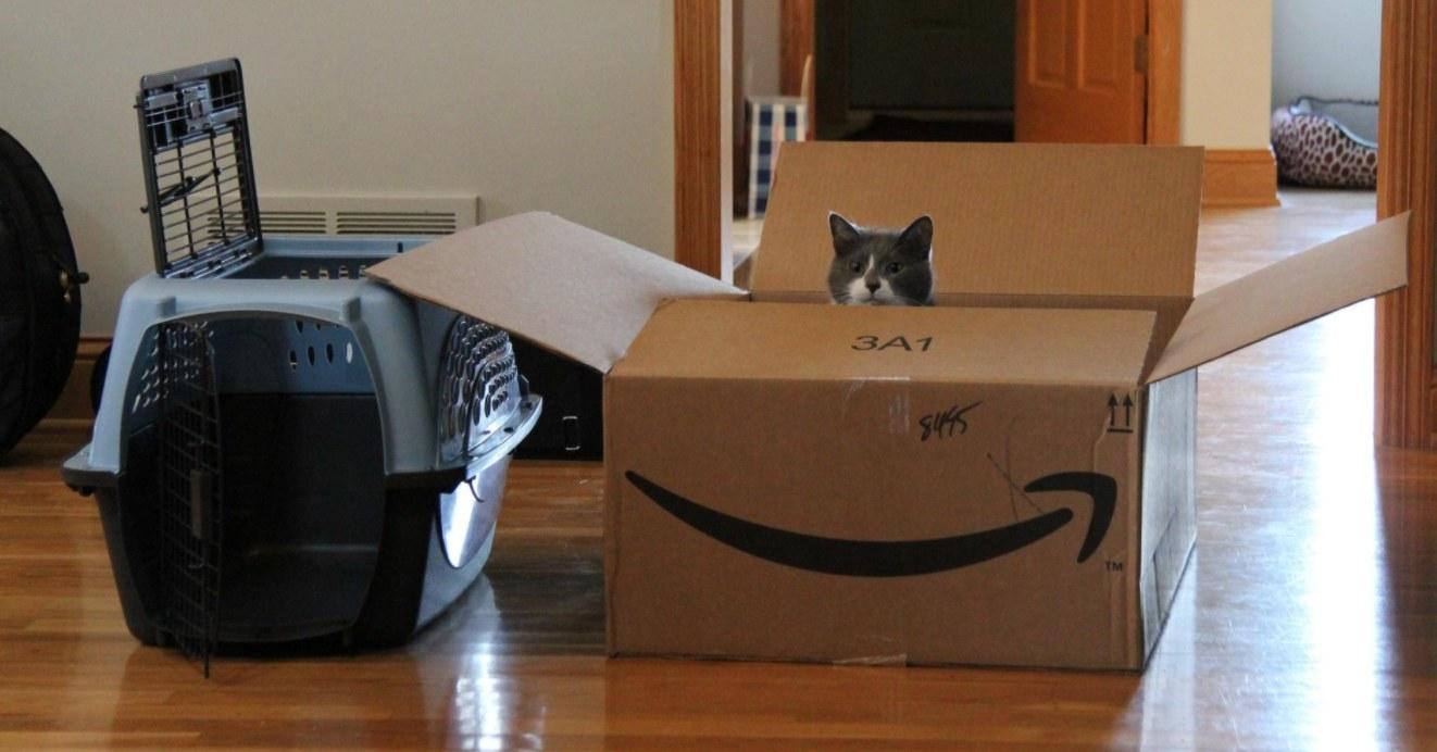 The two-door pet crate