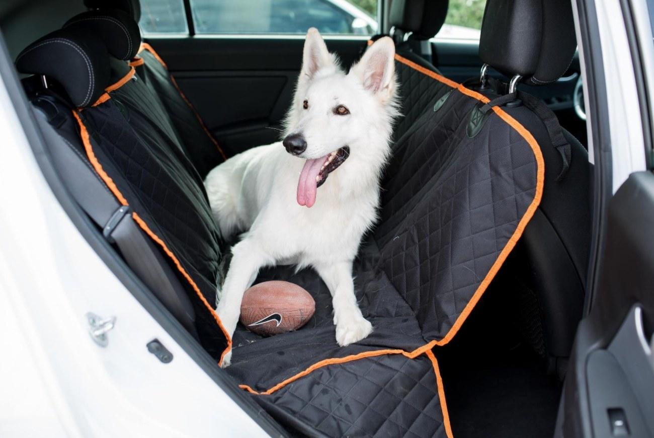 The car seat hammock