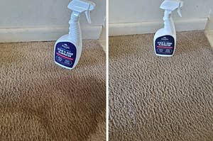 A before-and-after photo for a carpet cleaning spray
