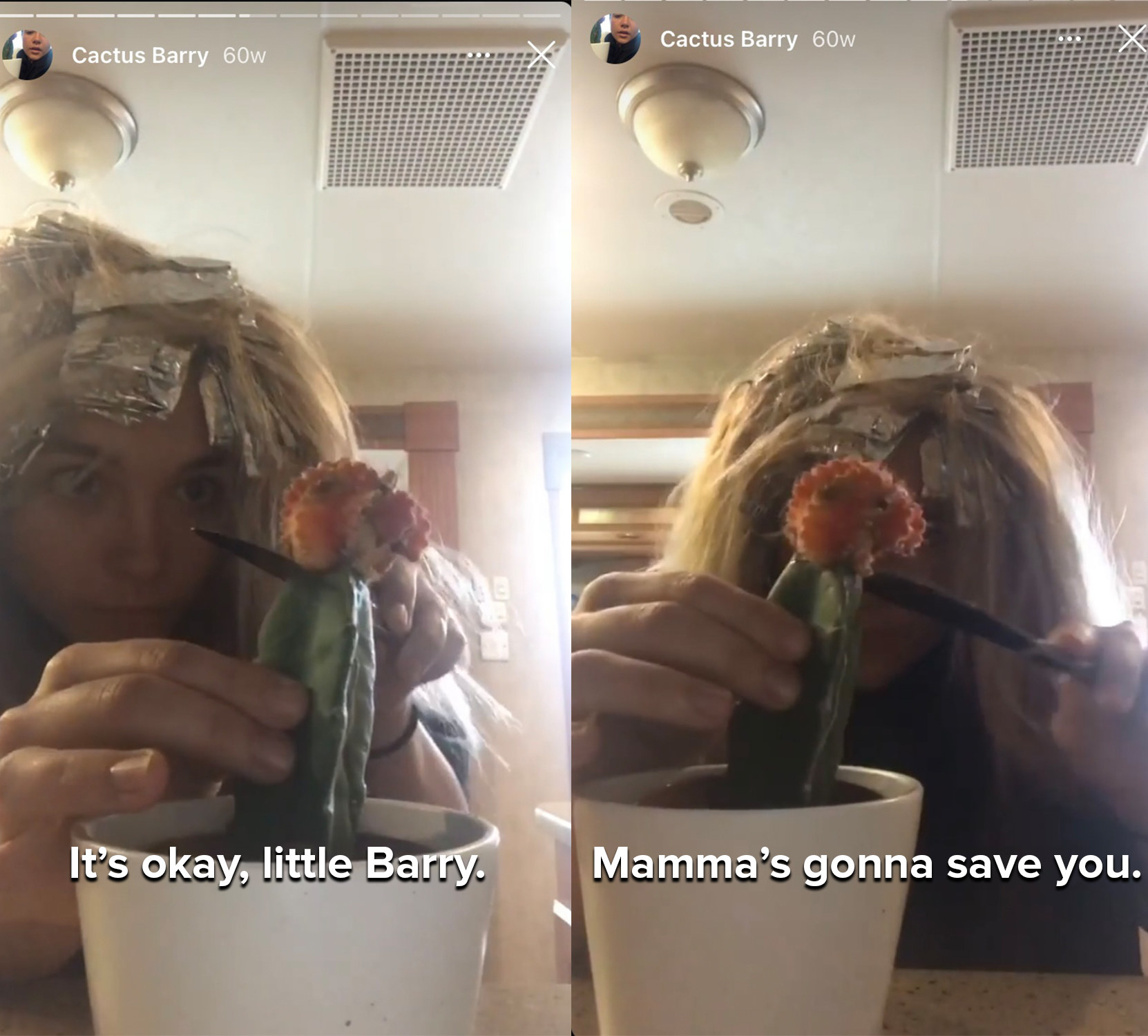 """Flo sings, """"It's okay, little Barry, Mamma's gonna save you"""" as she trims off the dead part of a cactus"""