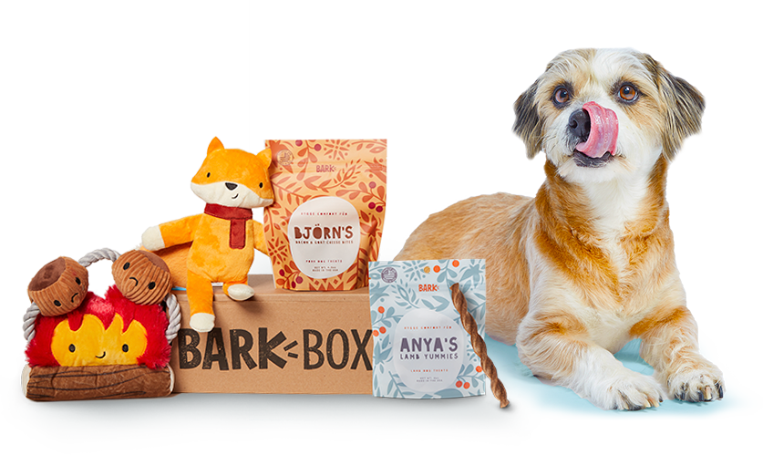 A dog sits next to an assortment of toys and treats from BarkBox