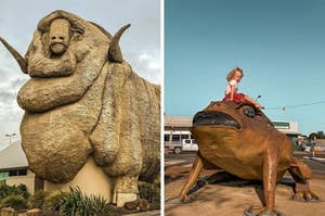 Side by side image of a giant statue of a merino sheep and a small girl sitting on a cane toad