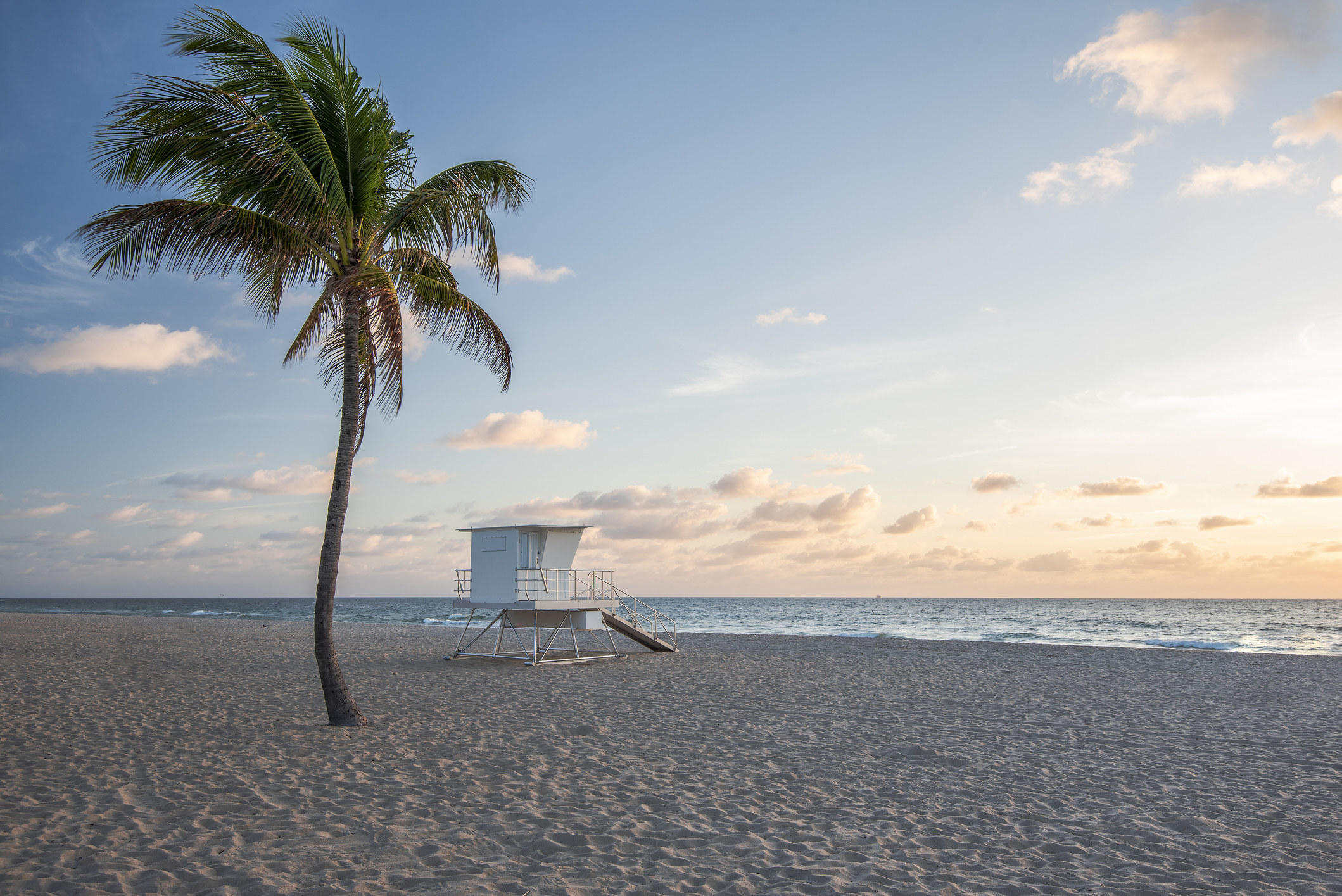 An empty beach in Ft. Lauderdale with a lone lifeguard station and palm tree
