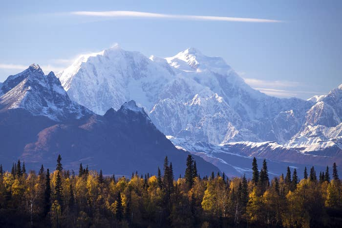 Mt. Hunter covered in snow with autumn-colored trees in the foreground