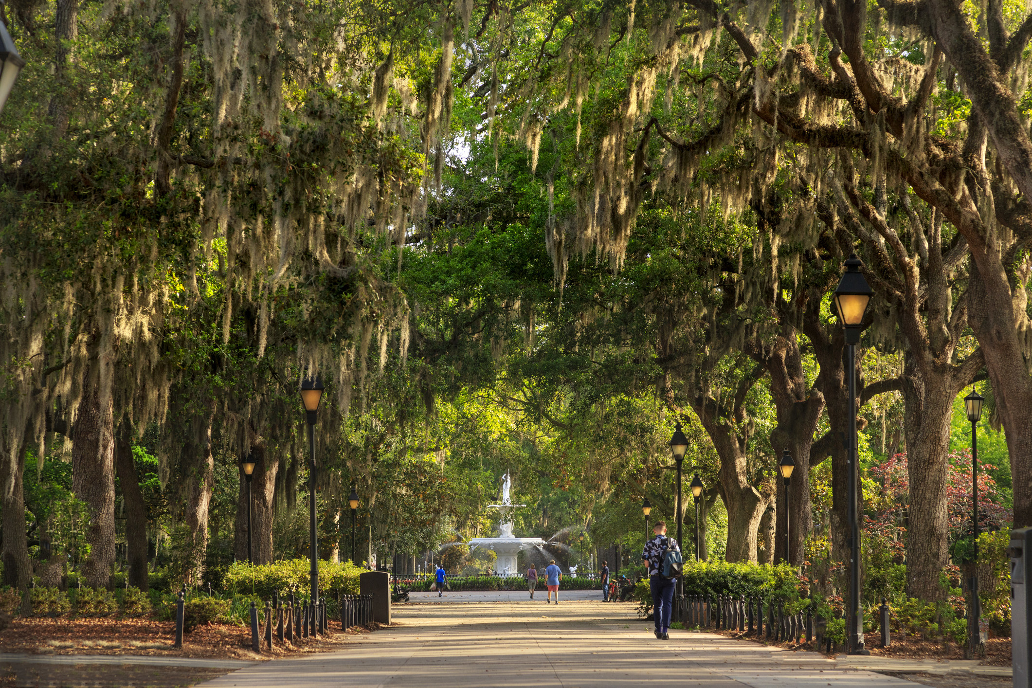 Forsyth Park with people walking under a canopy of trees towards a historic fountain