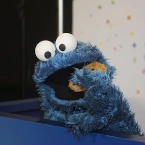 The cookie monster about to eat a chocolate chip cookie