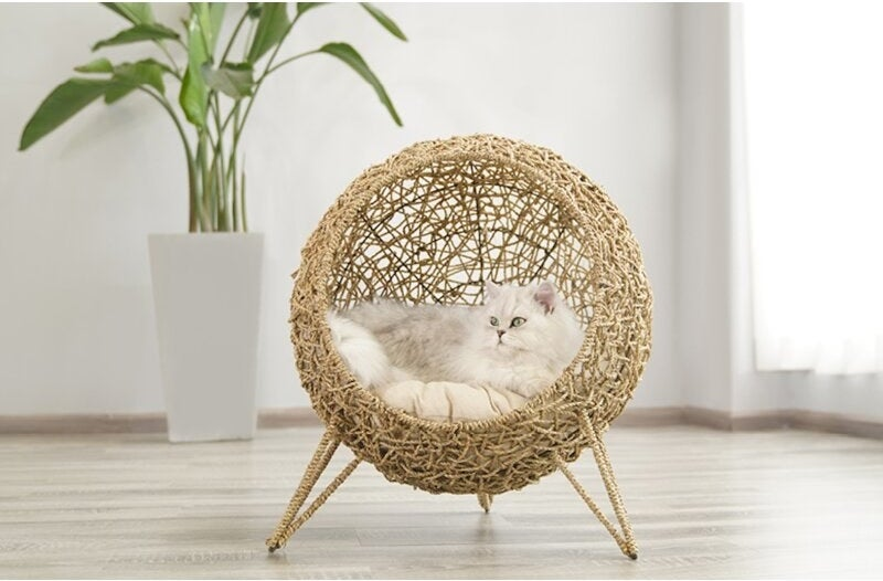 cat bed with metal frame  and cotton cushion