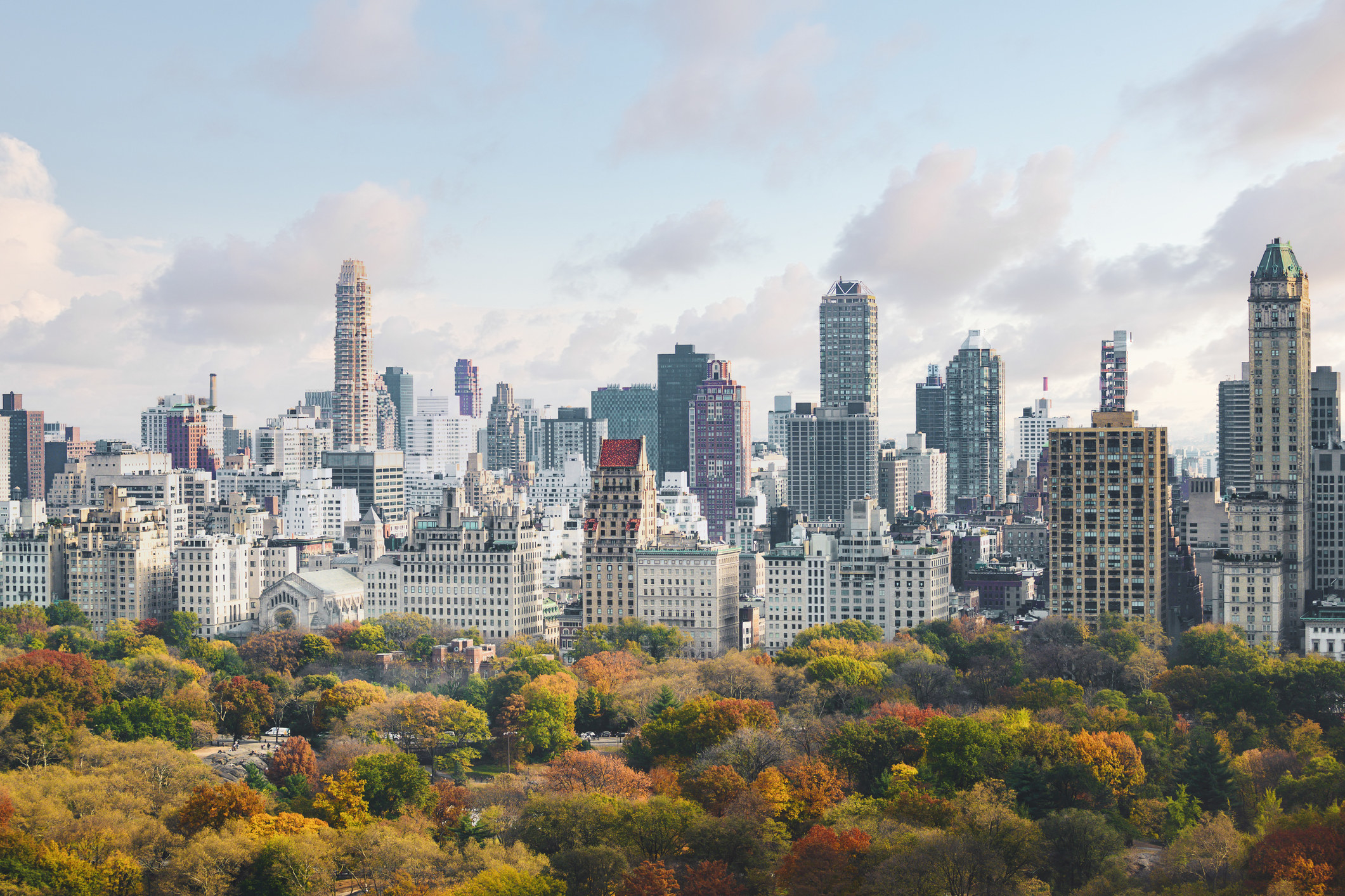 A top view of the autumnal trees of Central Park with the NYC skyline behind