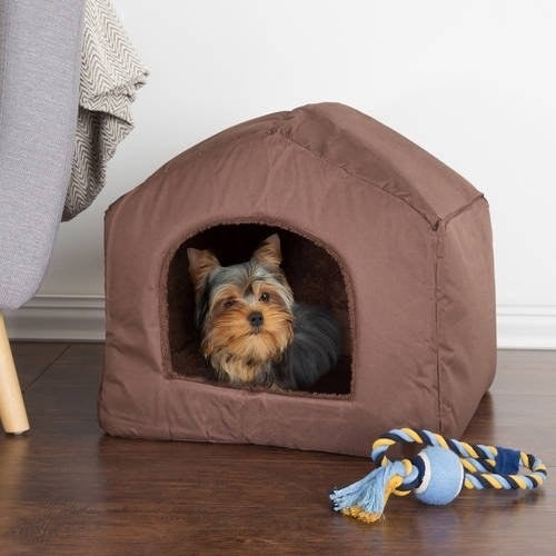the pet bed in brown