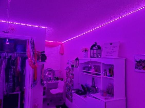 Reviewer's room in purple lighting