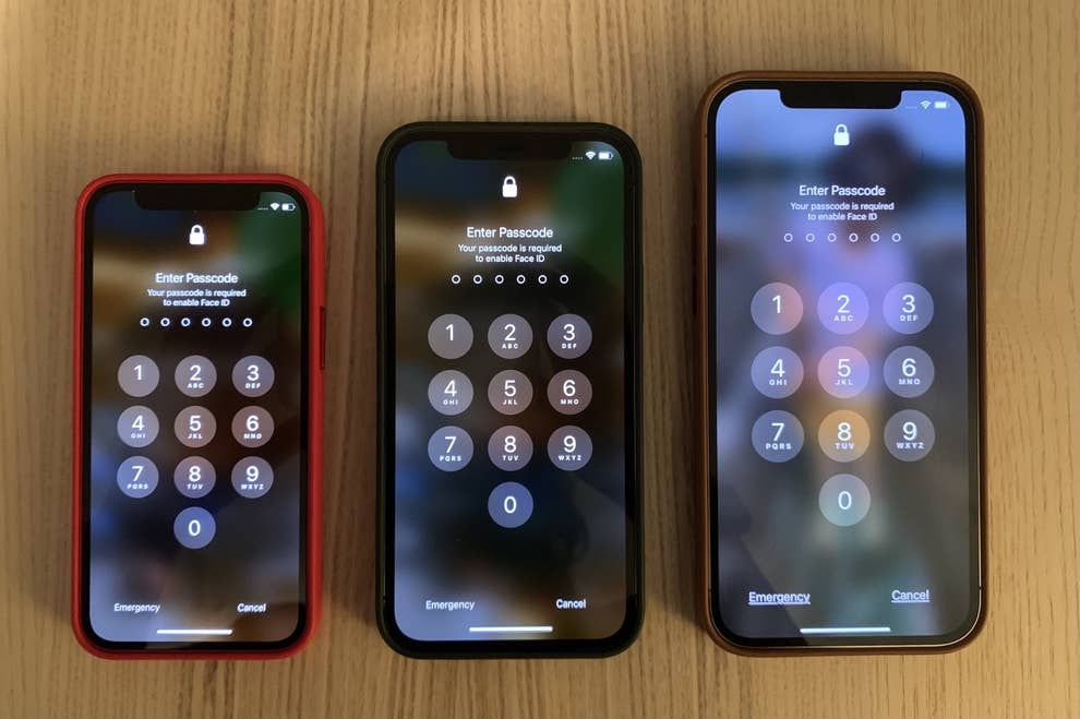 This Is How Big Is The Iphone 12 Mini Is In Your Hands
