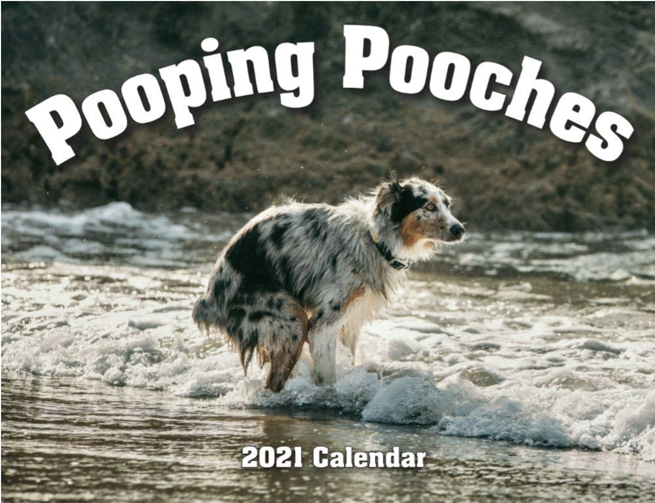 A calendar with a photo of a dog pooping on the front
