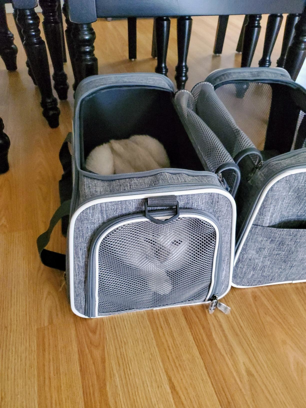 The carrier, which is rectangular, with mesh on the front, back, and side so the pet can see out
