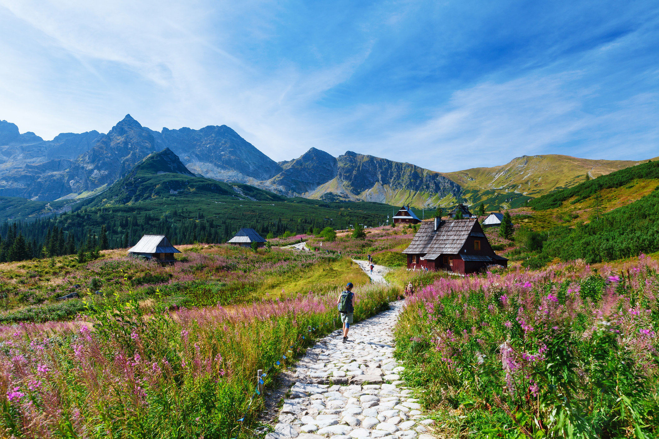A stone path leading past wildflowers to an alpine hut, with tall mountains set against a bright blue sky