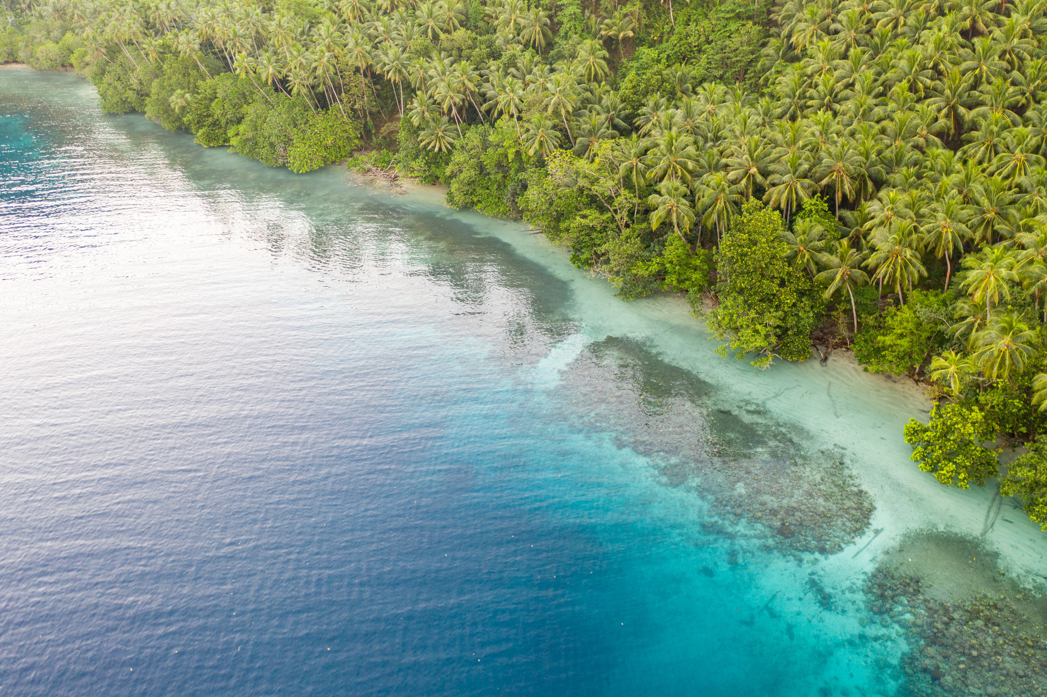 Drone shot of lear blue water and the coast of an island that is covered in dense jungle and palm trees