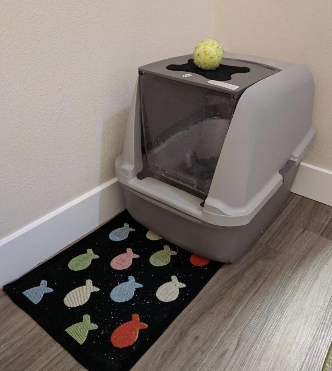 a grey hooded litter box in a corner