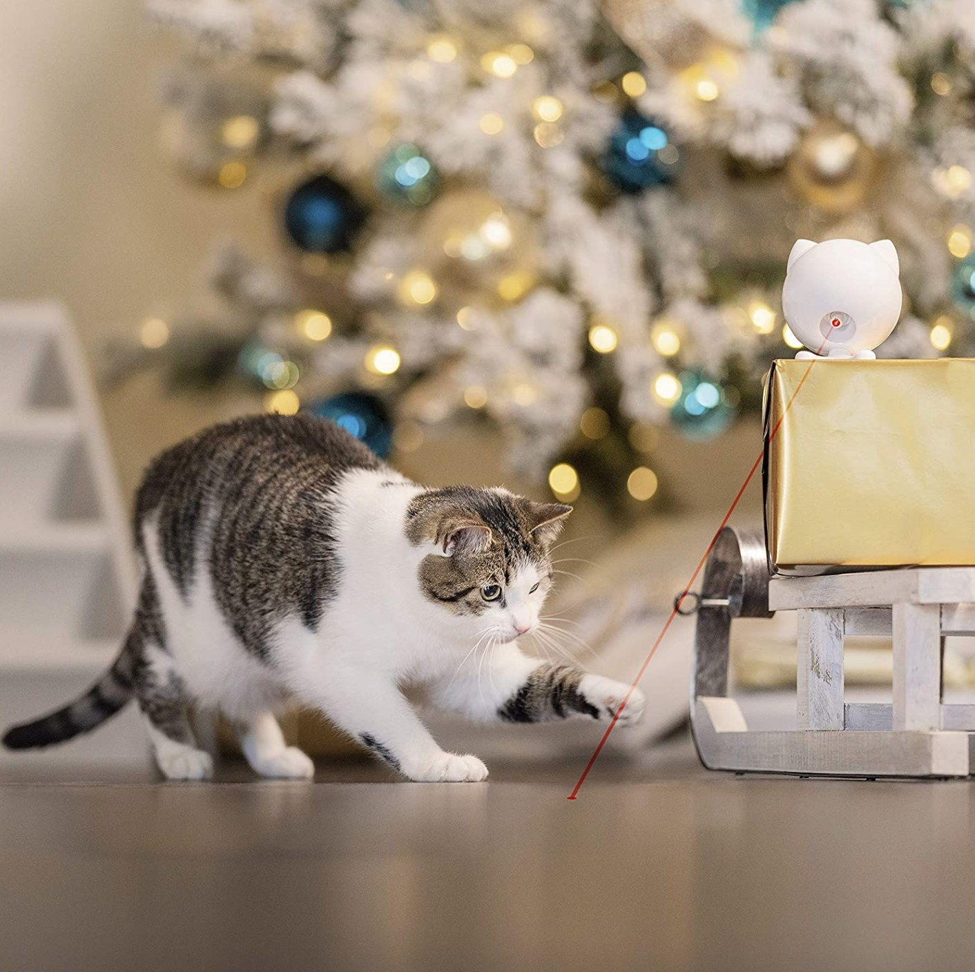 The interactive cat toy laser