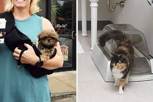 left image: person carrying dog in pet carrier, right image: cat using automatic litter box