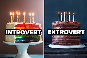 introvert label over rainbow cake and extrovert label over chocolate cake